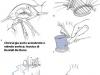 phoca_thumb_l_13-tecnica-di-bentall-de-bono