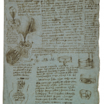 La valvola aortica (1512-1513)